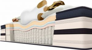Body Contouring to Pillow Top Mattress